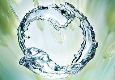 Renewable Fluids BioLife